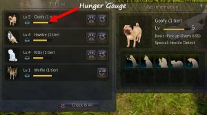 bdo-pearl-shop-pet-hunger-gauge1