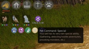 bdo-pearl-shop-pet-special-function-2